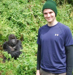 tim n gorilla