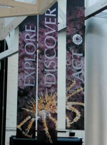 Monterey Bay Aquarium has colorful banners that emphasize their themes of Explore, Discover and Act.