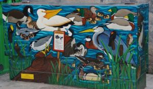 Utility boxes in Fort Collins, Colorado, are painted with varied scenes by local citizens.