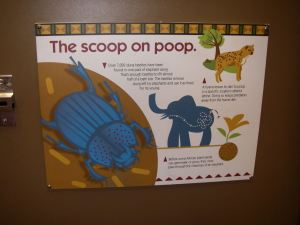Bathroom messages at the Cleveland Metroparks Zoo share relevant messages to where you are.