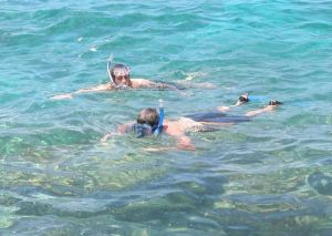The average of 29 snorkeling deaths a year in Hawaii are usually attributed to inexperienced people in unfamiliar circumstances in the ocean.